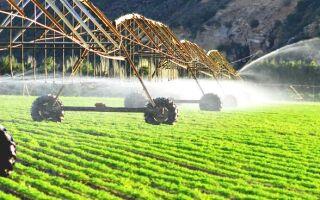 Управление промышленностью и сельским хозяйством