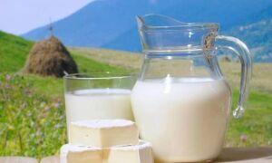 ДОГОВОР на поставку сырого молока